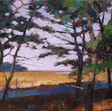LarryHorowitz-Marsh-Path-38x50
