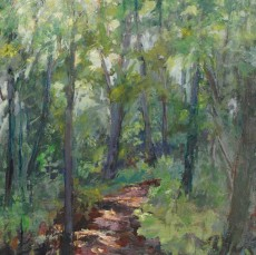 Judy-Chaves-walk-in-the-woods-II