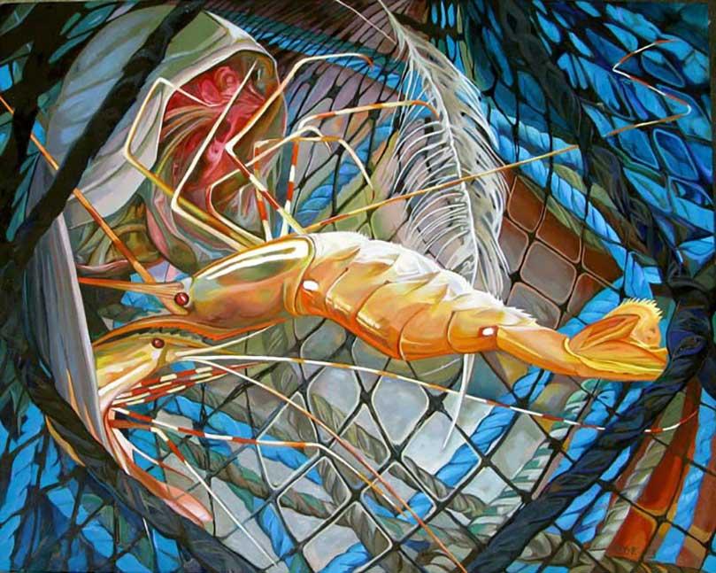 KathyHodge-shrimp-net